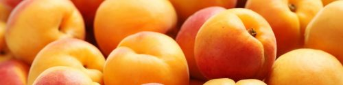 Apricot Allergy Test