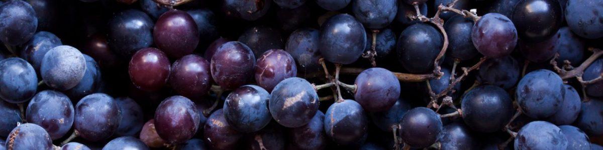 Grape Allergy Test