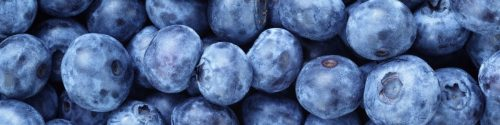 Blueberry Allergy Test