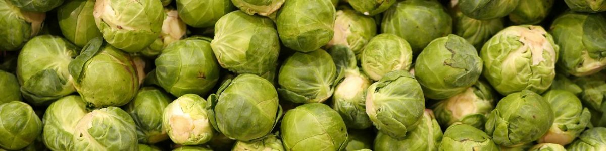 Brussels Sprouts Allergy Test