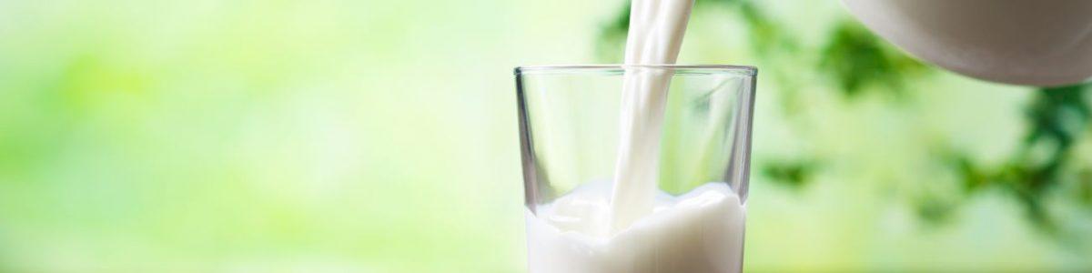 Mare's Milk Allergy Test