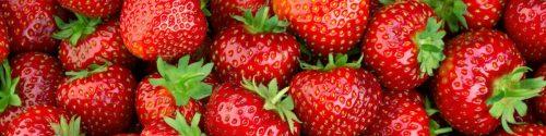 Strawberry Allergy Test
