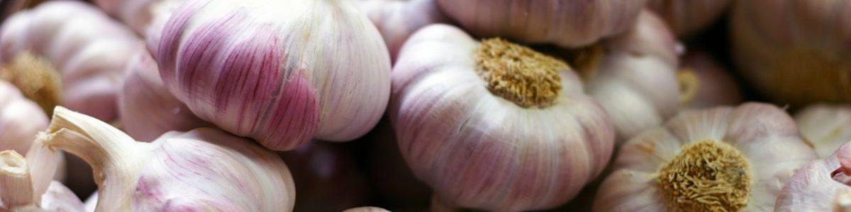 Garlic Allergy Test