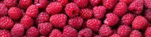 Raspberry Allergy Test