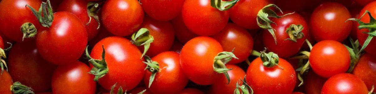 Tomato Allergy Test