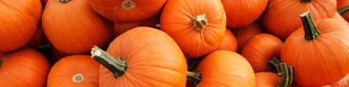 Pumpkin Allergy Test