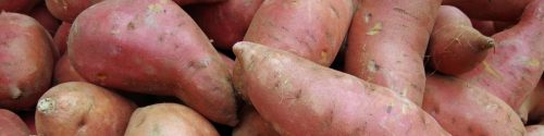 Sweet Potato Allergy Test