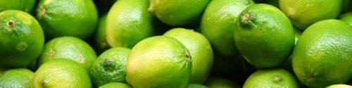 Lime Allergy Test