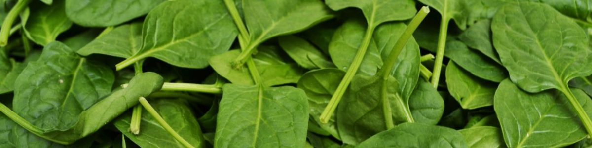 Spinach Allergy Test