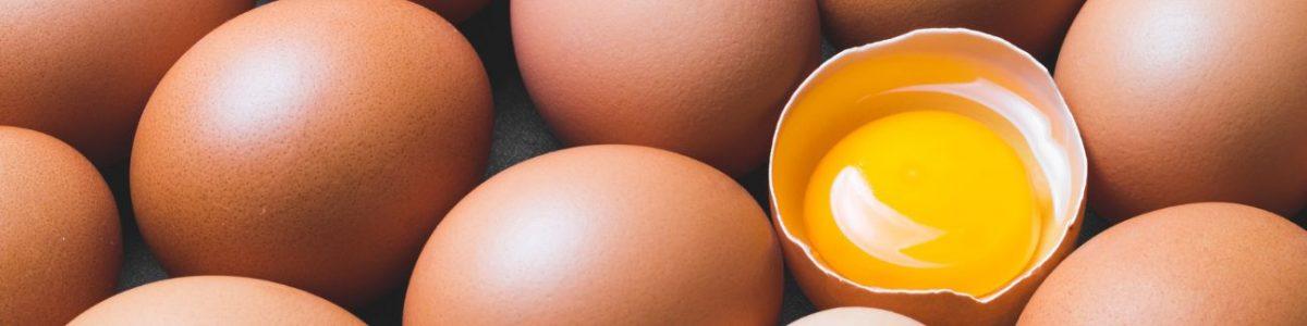Egg Yolk Allergy Test
