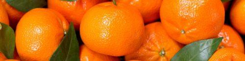 Mandarin Allergy Test