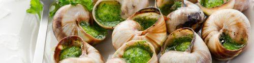 Snail Allergy Test