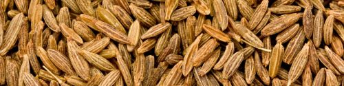 Fennel Seed Allergy Test
