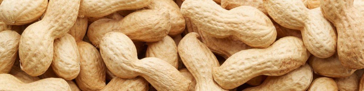 Peanut Allergy Test
