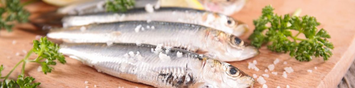 Sardine (Japanese Pilchard) Allergy Test