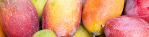 Mango Allergy Test