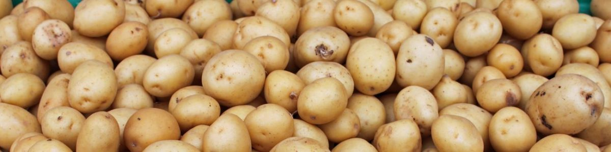 Potato Allergy Test