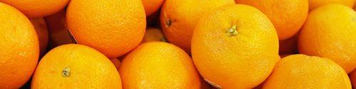 Orange Allergy Test