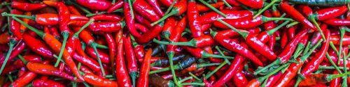 Chili Pepper Allergy Test