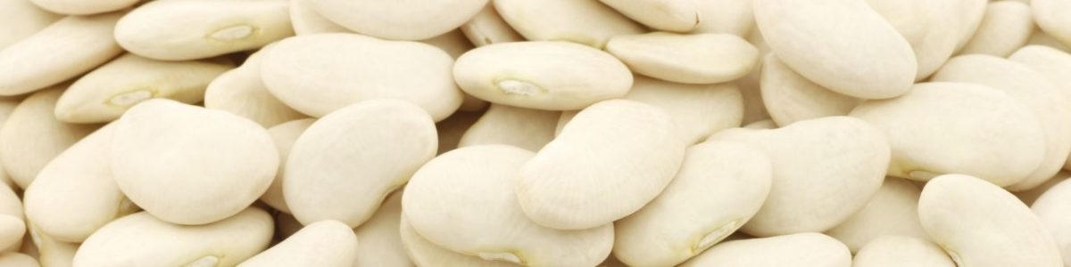Lima Bean Allergy Test