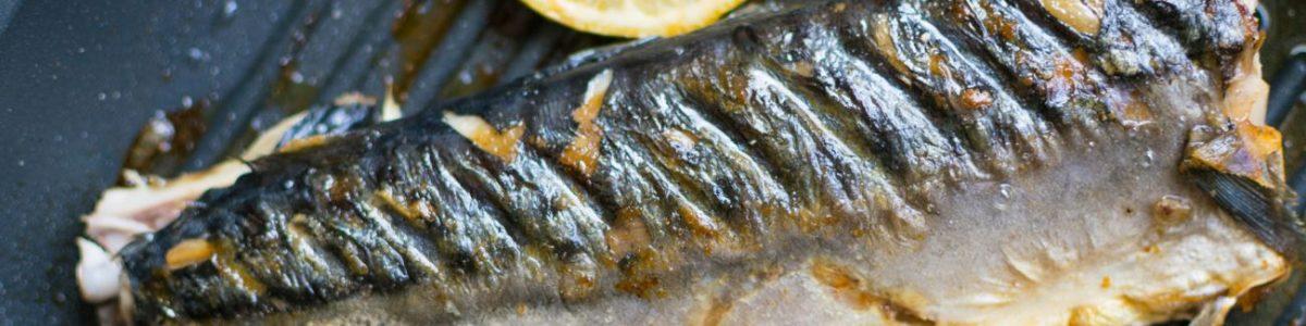 Chub Mackerel Allergy Test